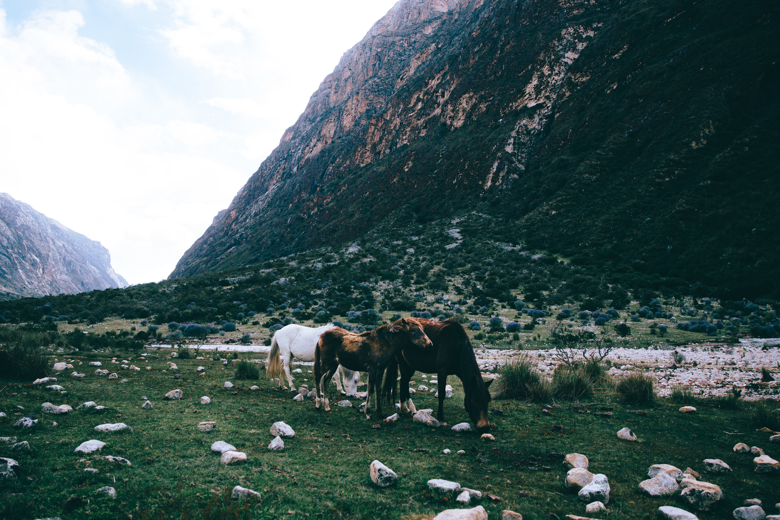 Peru_27_00413.jpg