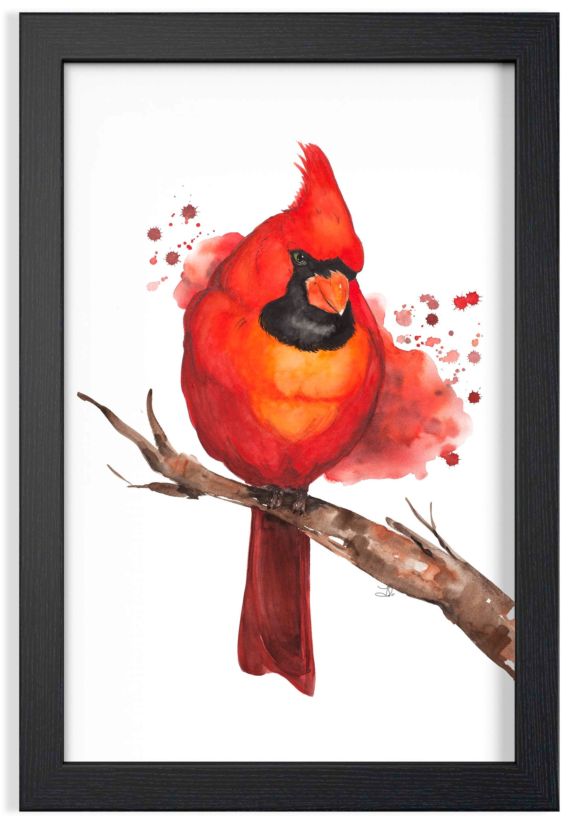 """Red Cardinal Watercolor  SOLD Fabriano Artistico 100% Cotton  Original watercolor painting 16 x 24"""" (41 x 61 cm)"""