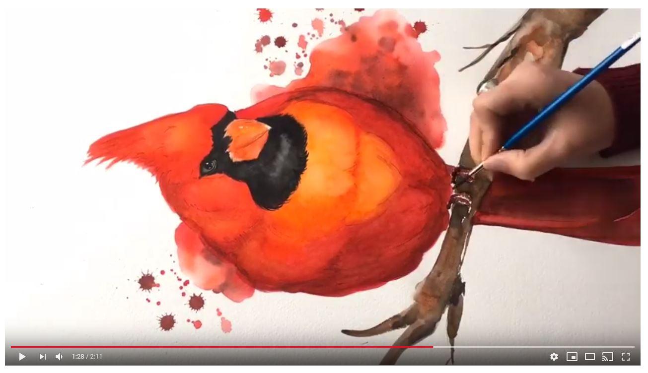 Cardinal-watercolor-painting-video.JPG