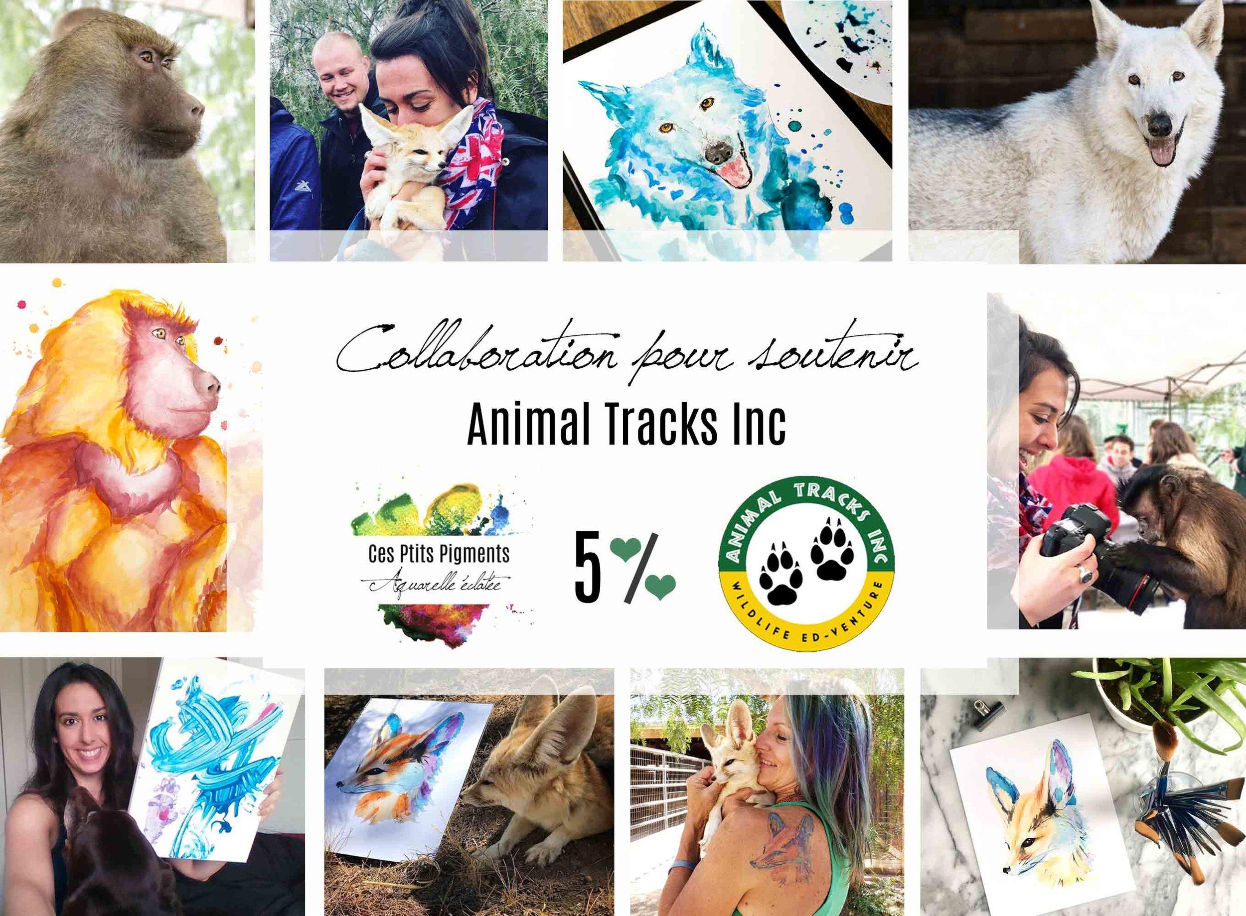Animal Tracks Inc est un refuge pour animaux situé à Agua Dulce, au nord de Los Angeles, CA.
