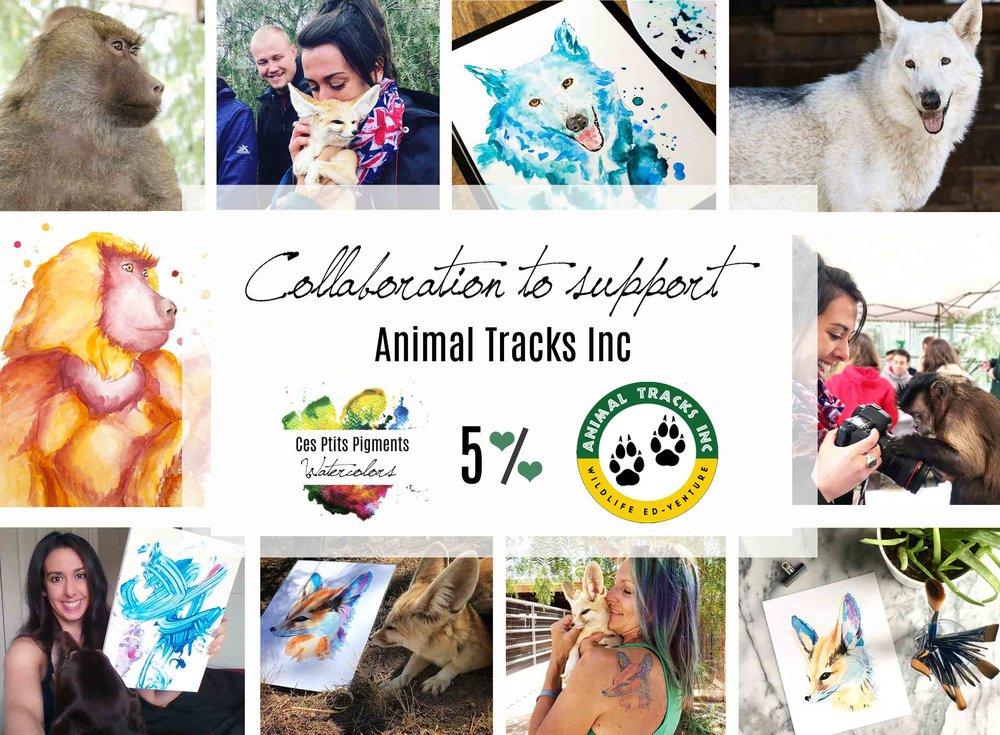 Animal_Watercolor_Donation_ProgramSupport.jpg