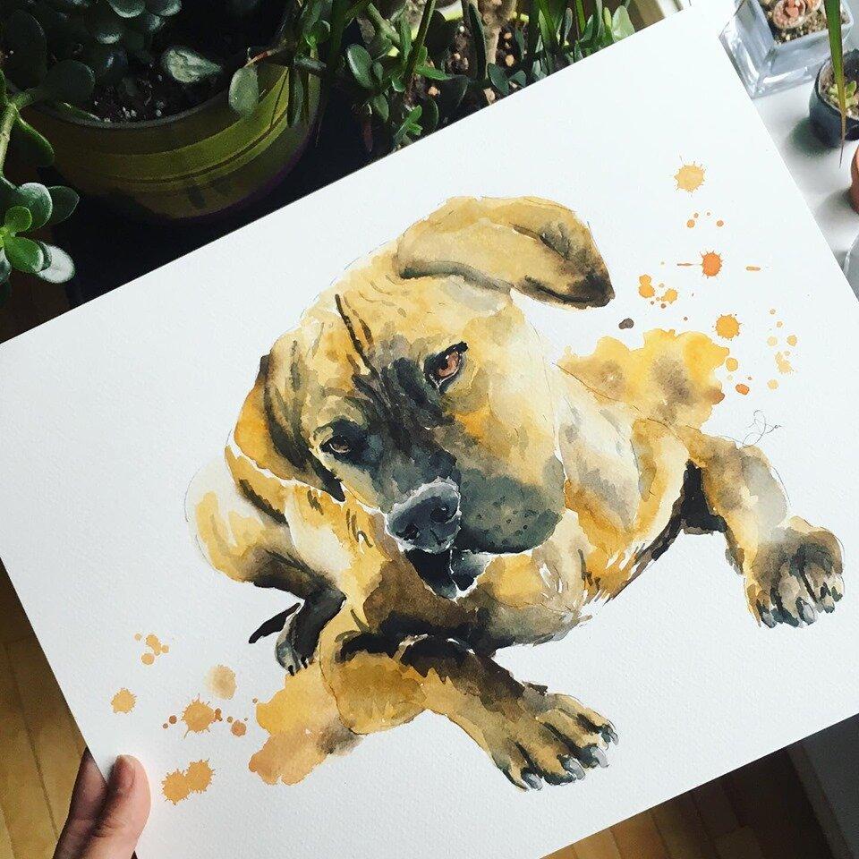 Watercolor_pet_portrait_01.jpg