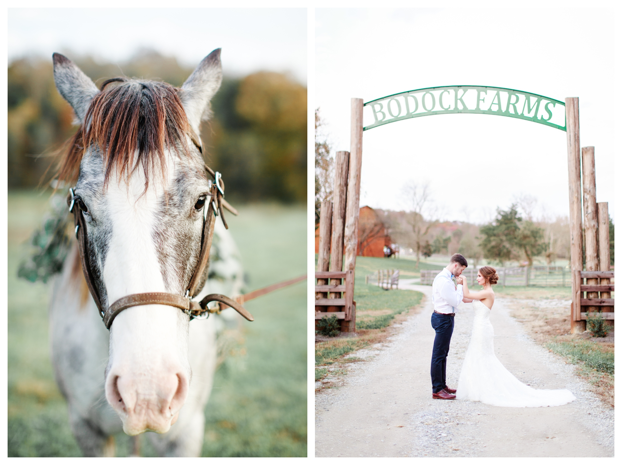 Allyography_WinterWeddingStyledPortraiture_BodockFarms_BurkesvilleKentucky-358-1.jpg