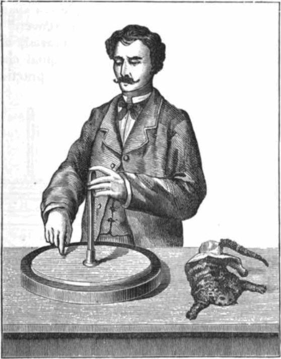 Electrophorus with bonus cat skin charging device and dapper Victorian gentleman