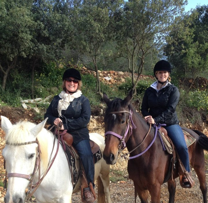Lisa Horses.jpg