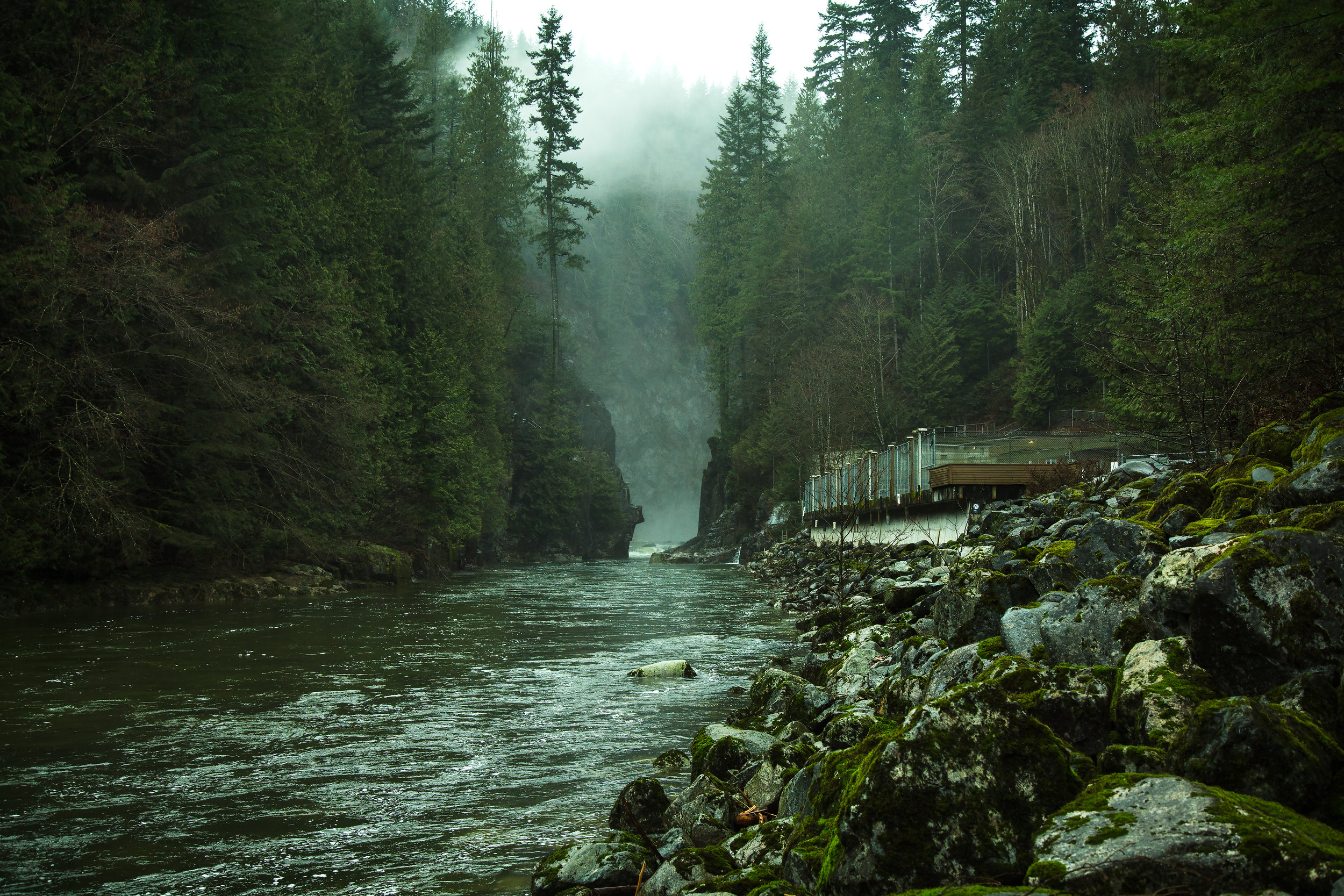 Capilano River Canyon near Vancouver, BC. It wasn't a sunny day, but the clouds and the mist added to the rustic green atmosphere.