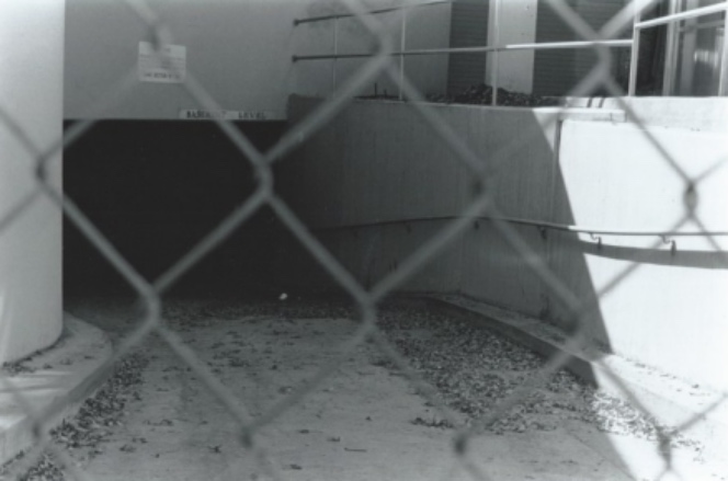 fenceFotor.jpg