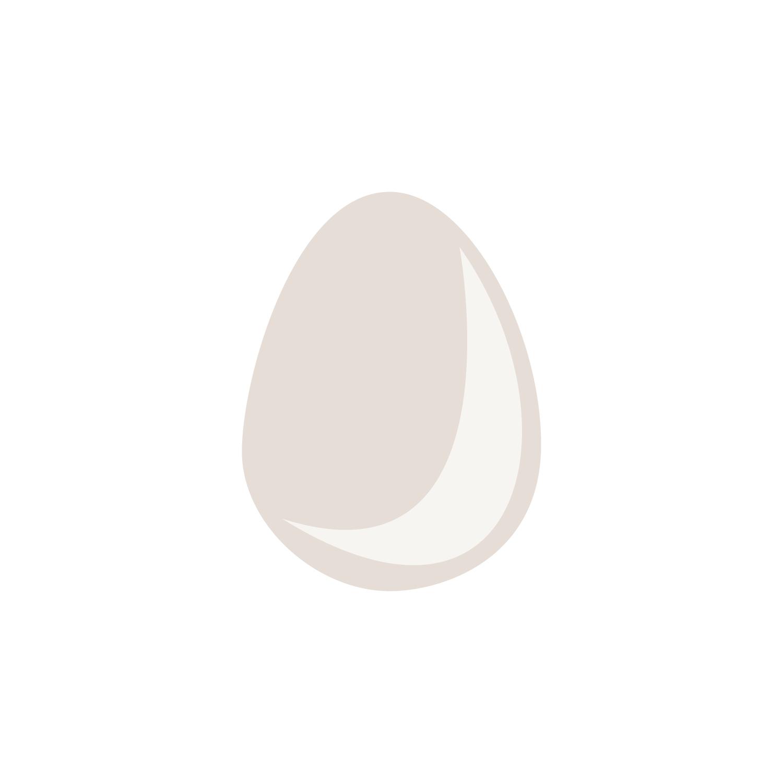 Egg-Icon139.jpg