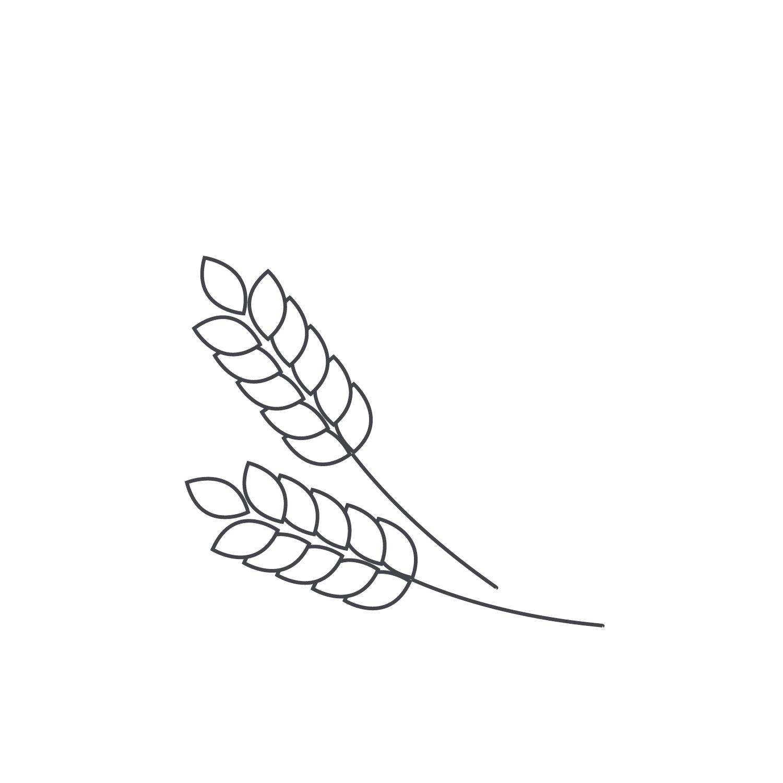 Wheat-Icon-blog33.jpg