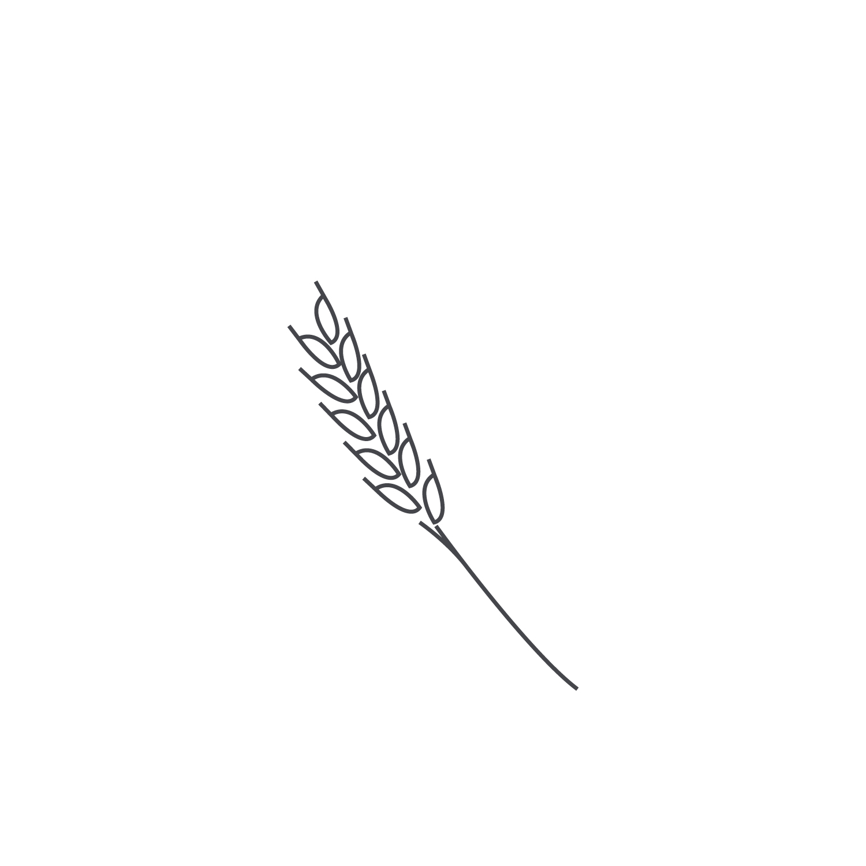Wheat-Icon-blog34.jpg