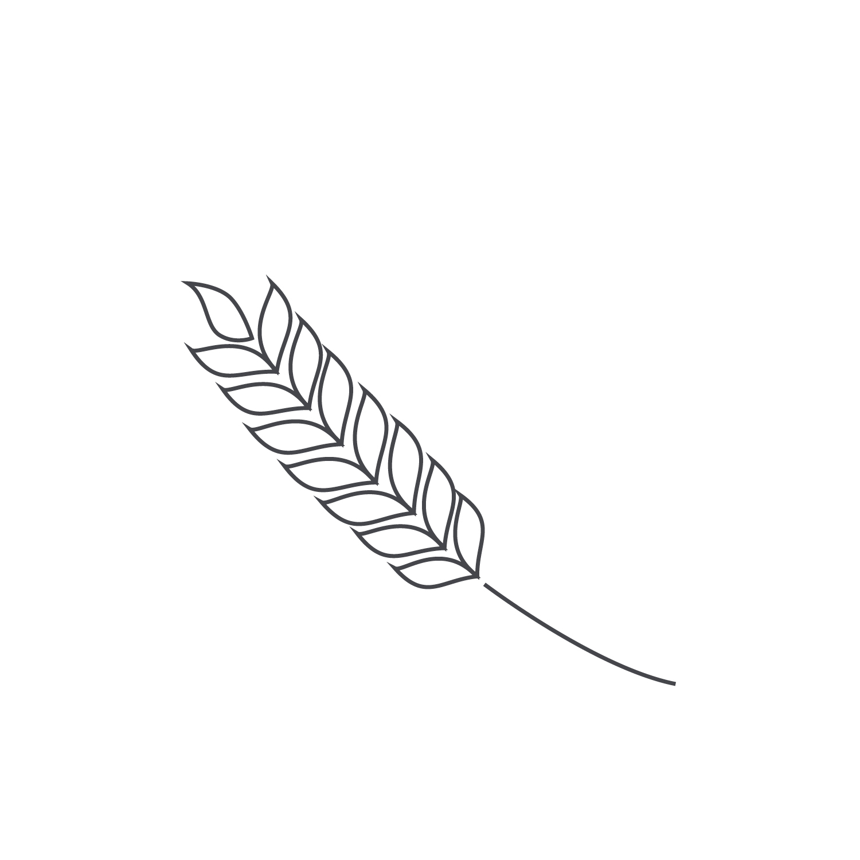 Wheat-Icon-blog35.jpg