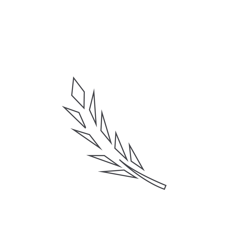 Wheat-Icon-blog39.jpg