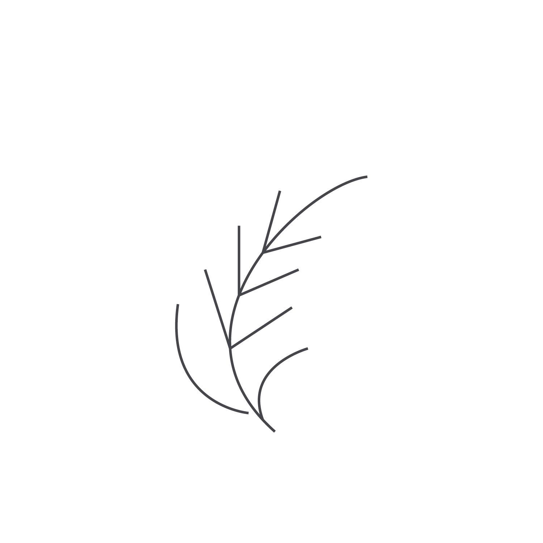 Wheat-Icon-blog45.jpg