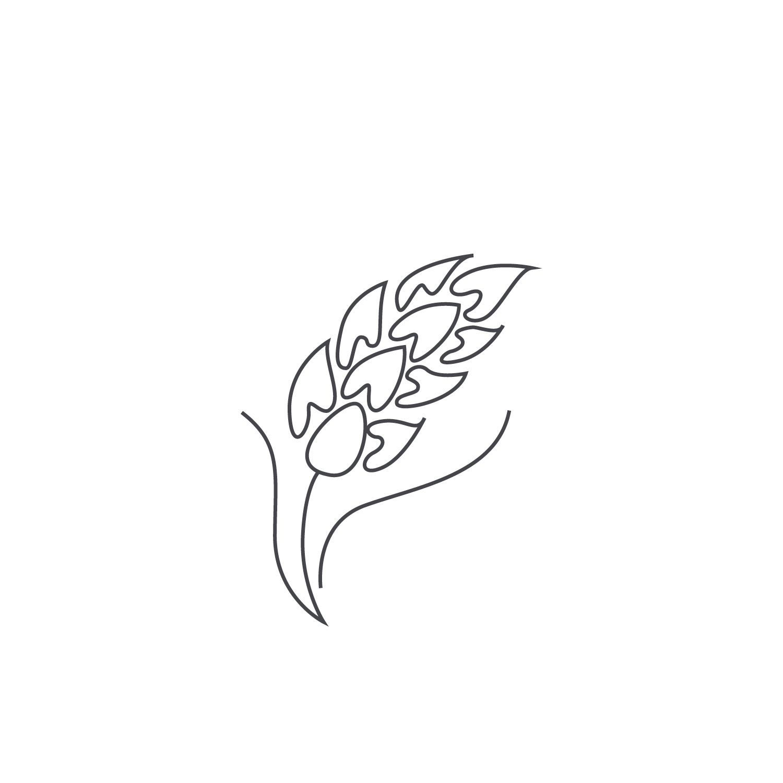 Wheat-Icon-blog44.jpg