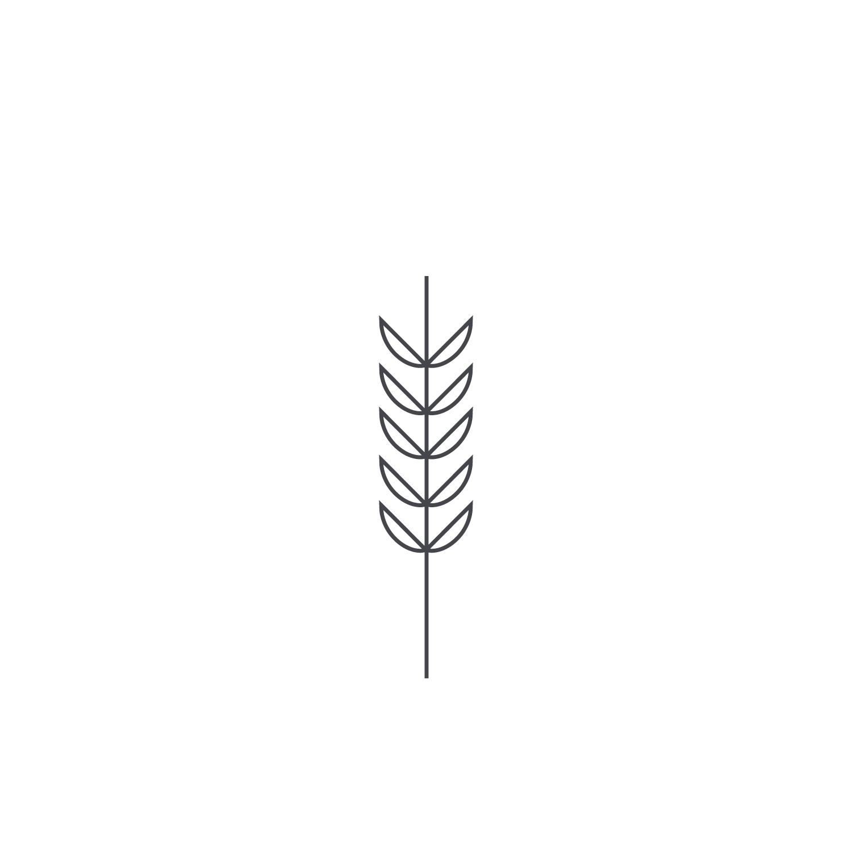 Wheat-Icon-blog57.jpg