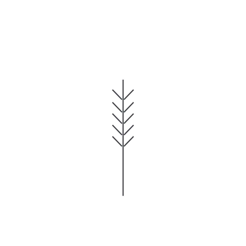 Wheat-Icon-blog58.jpg