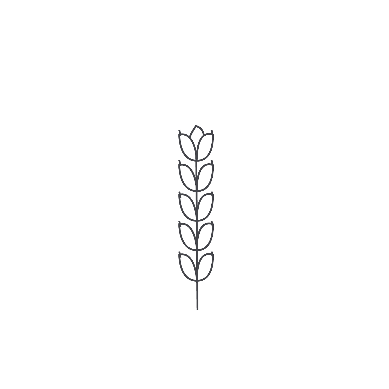 Wheat-Icon-blog63.jpg