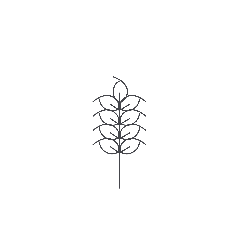 Wheat-Icon-blog71.jpg