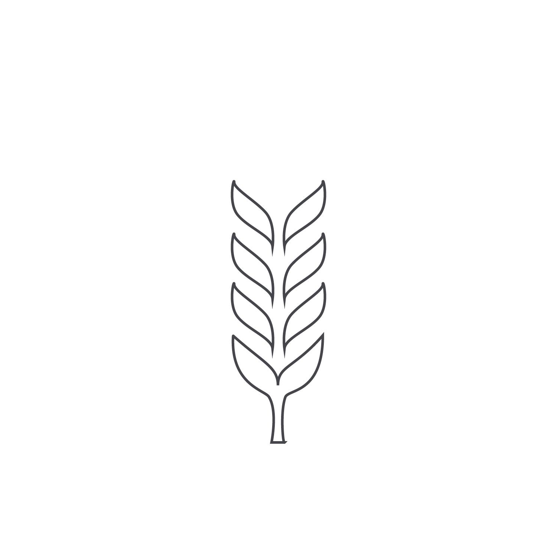 Wheat-Icon-blog78.jpg
