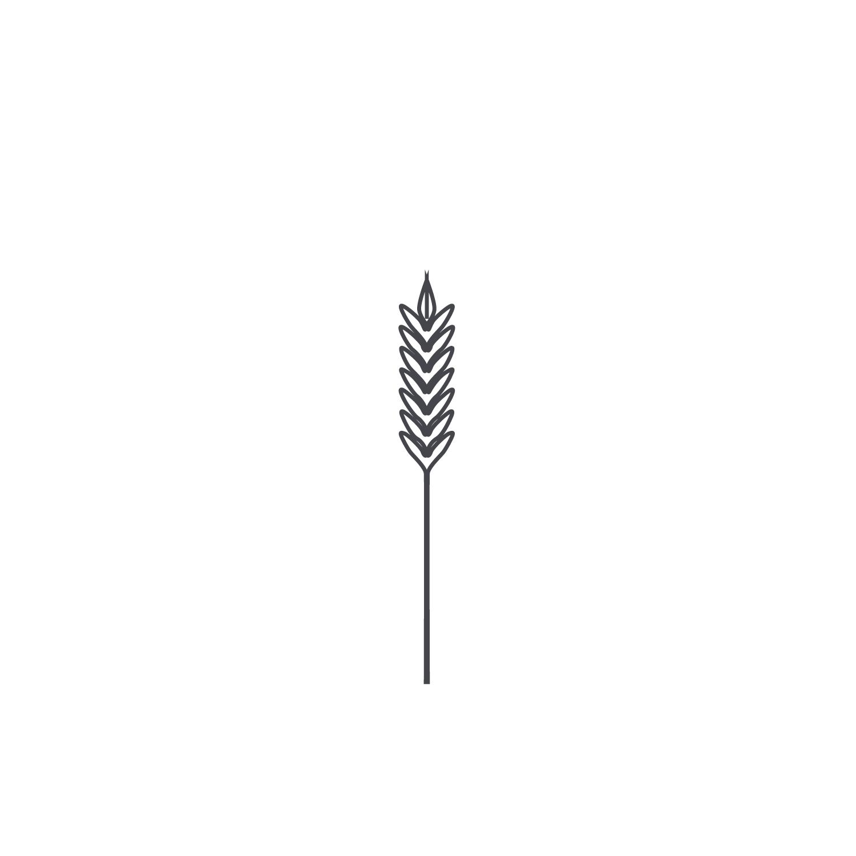 Wheat-Icon-blog80.jpg