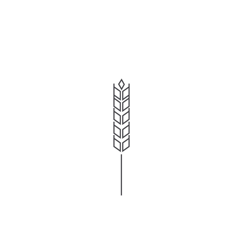 Wheat-Icon-blog81.jpg