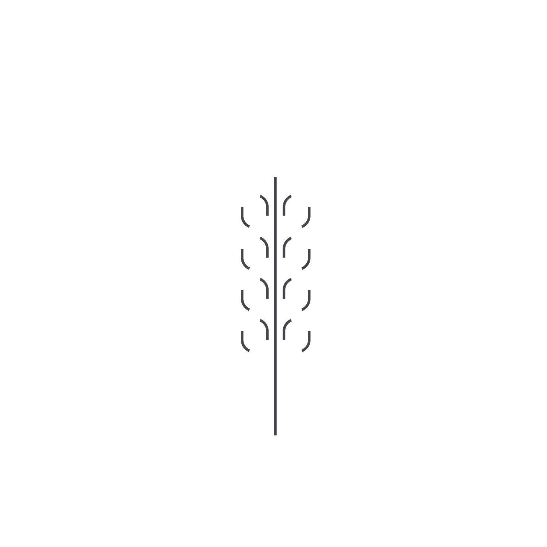 Wheat-Icon-blog93.jpg