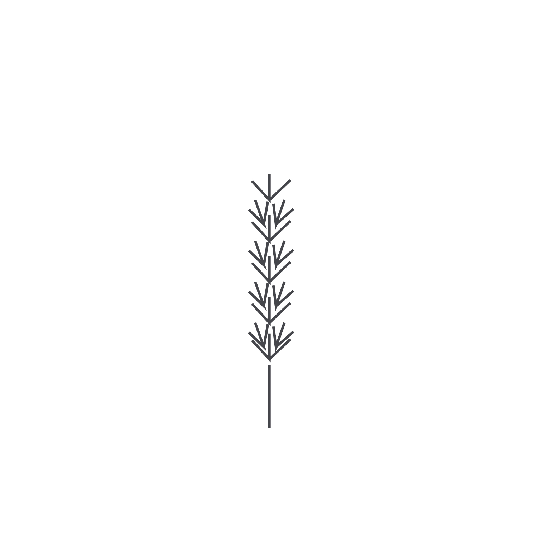 Wheat-Icon-blog94.jpg