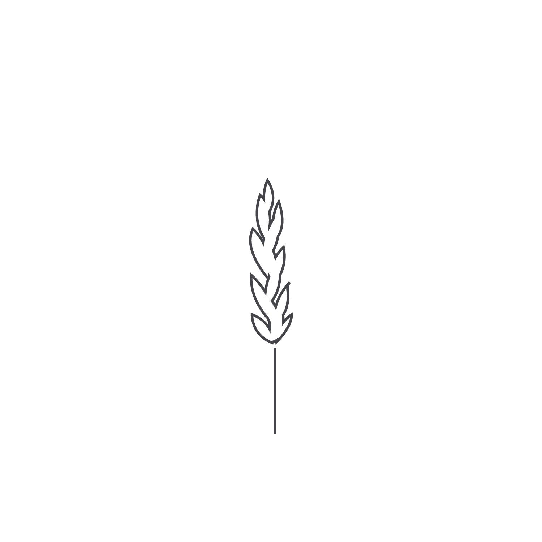 Wheat-Icon-blog105.jpg