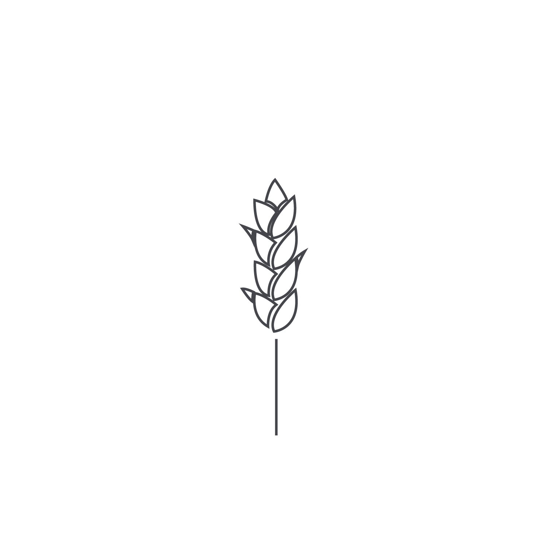 Wheat-Icon-blog117.jpg
