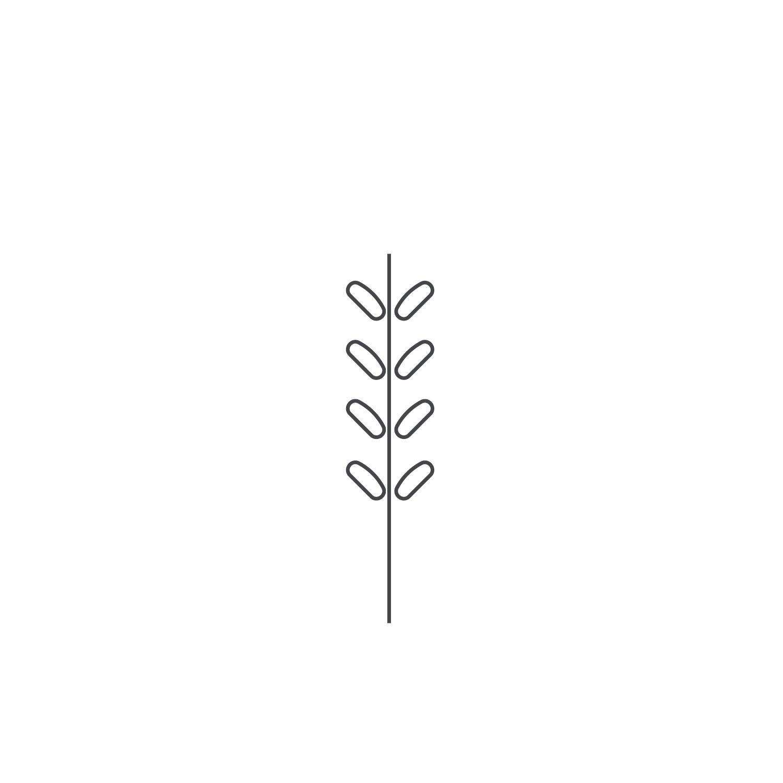 Wheat-Icon-blog119.jpg