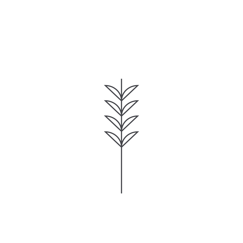 Wheat-Icon-blog120.jpg