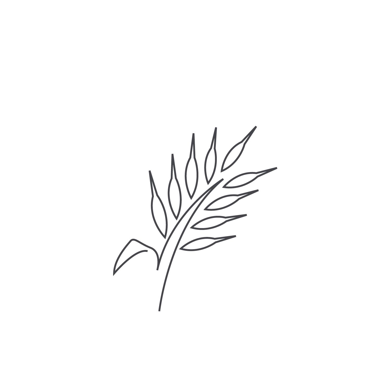 Wheat-Icon-blog126.jpg