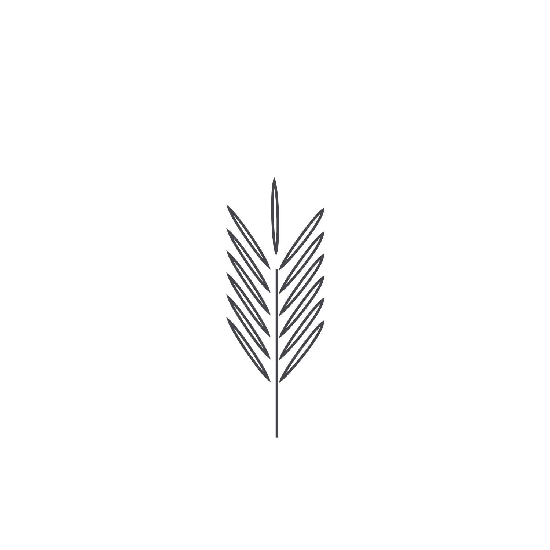 Wheat-Icon-blog158.jpg