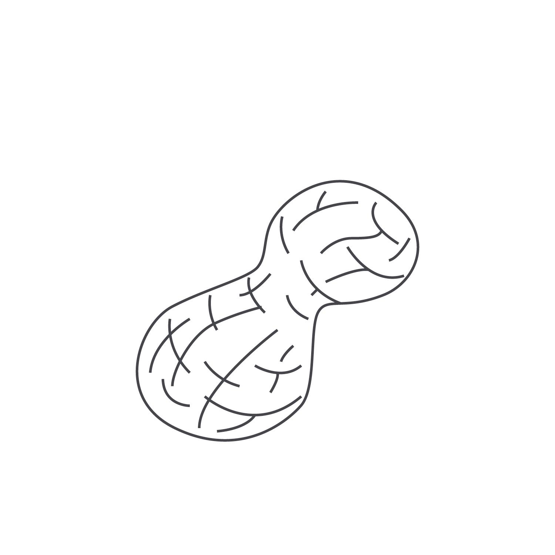 nut-Icon19.jpg