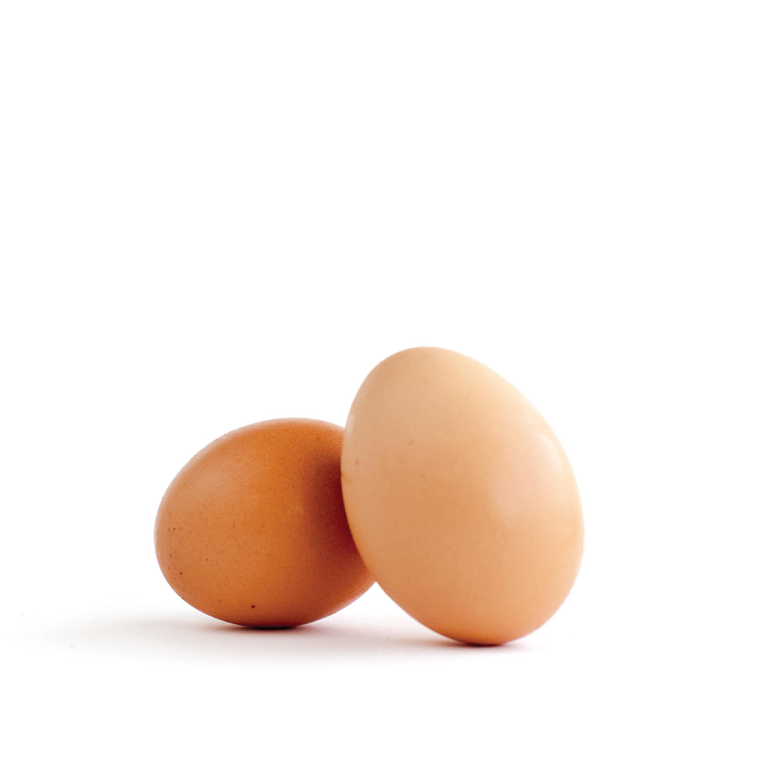 eggs-08-08.jpg