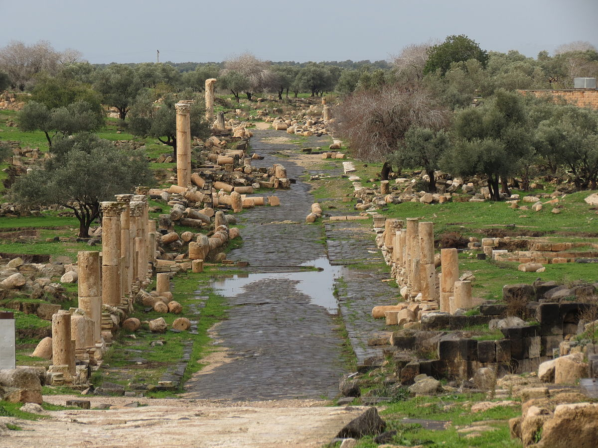 An ancient street in Umm Qais after the rain. Photo taken by xorge, distributed under  CC BY-SA 2.0  license.