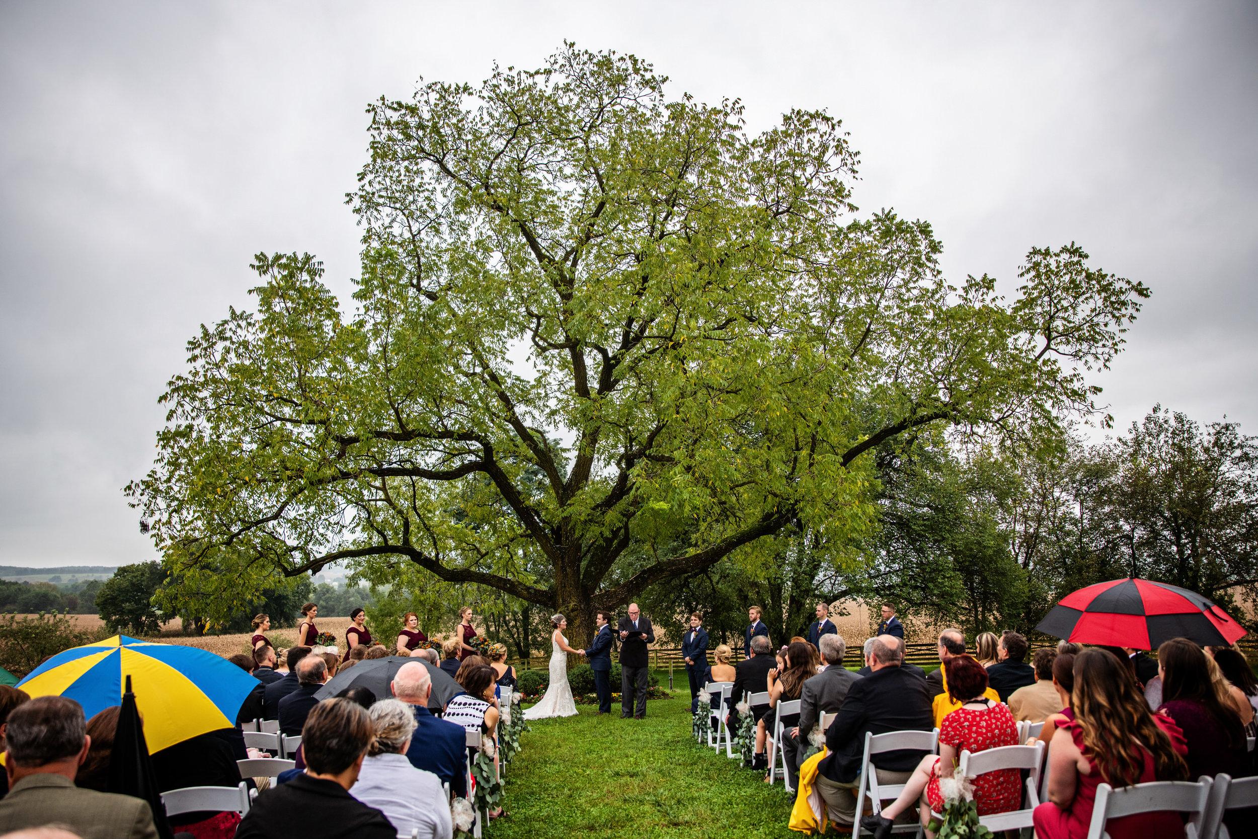 WalkersOverlookWedding-Angela&Ben-Ceremony-4.jpg