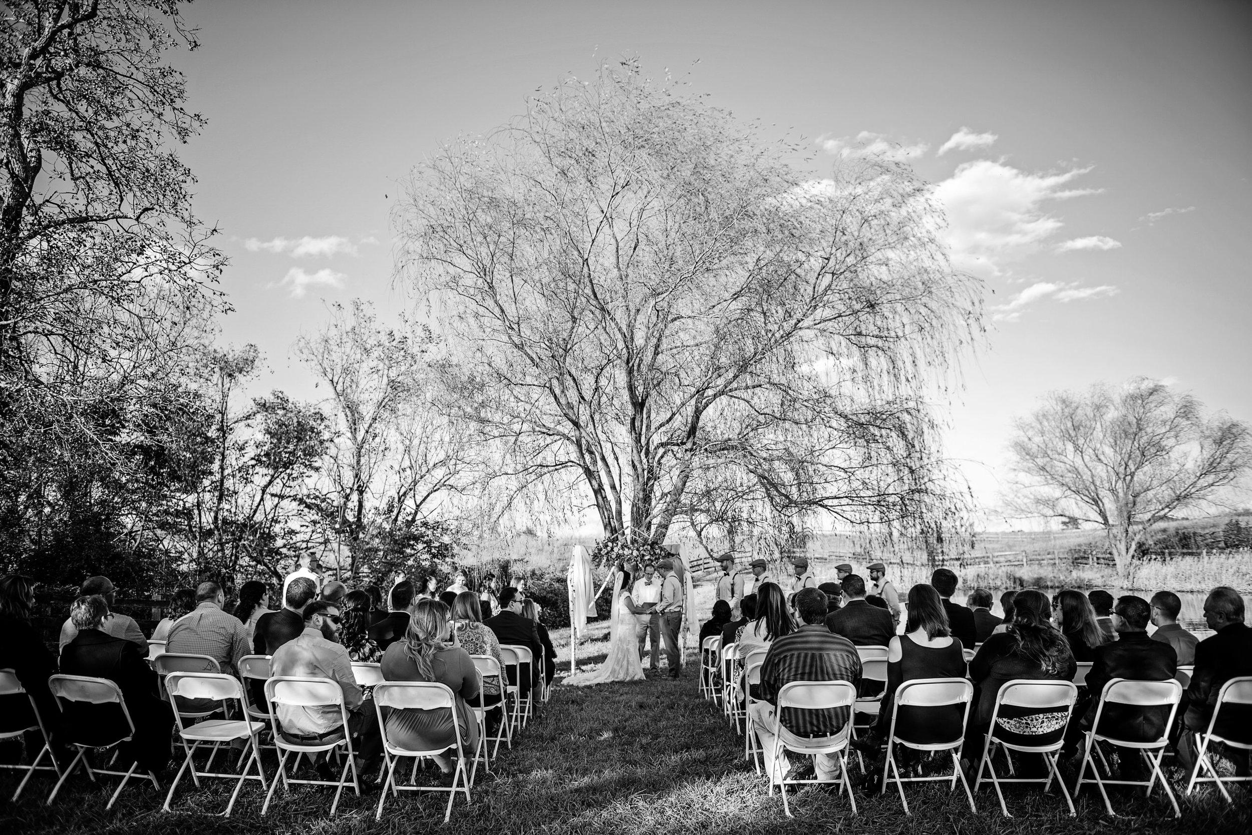 FaithLikeAMustardSeedWedding-Jen&Jeff-Ceremony-22.jpg