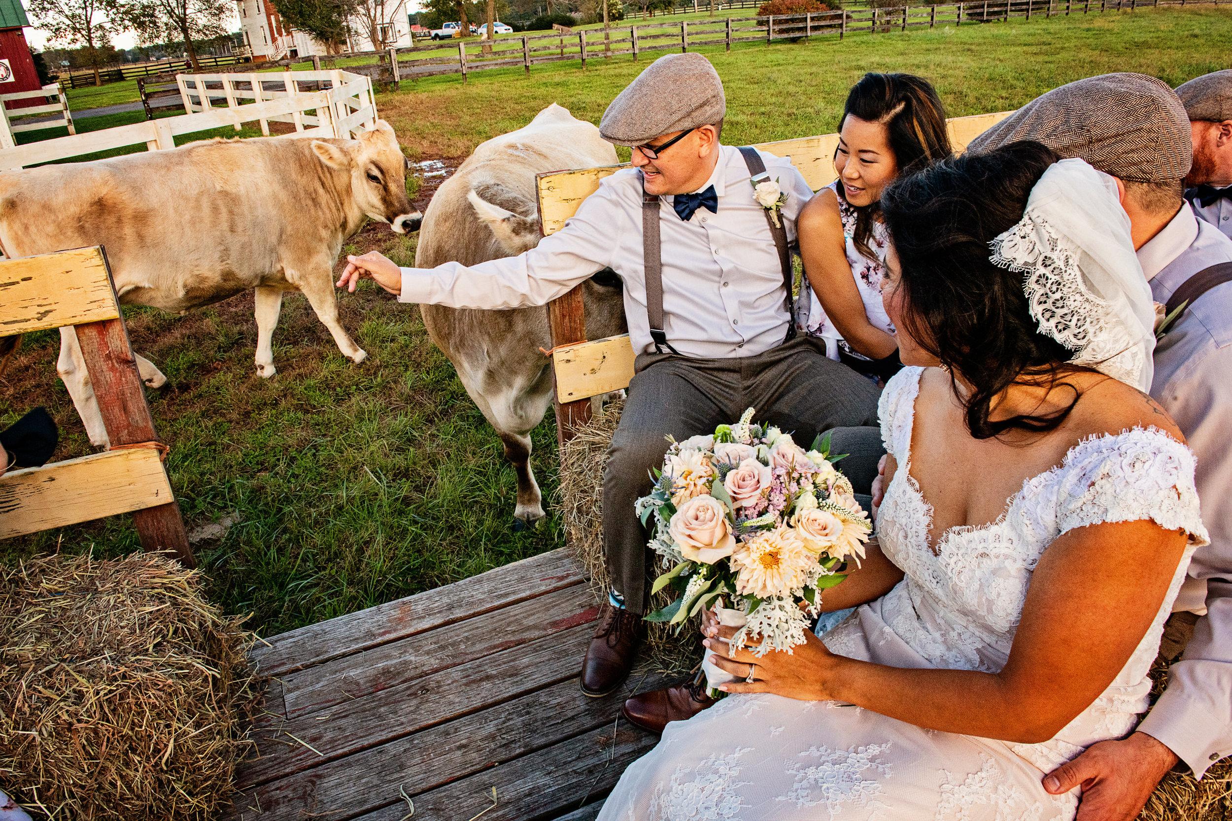 FaithLikeAMustardSeedWedding-Jen&Jeff-WeddingParty-17.jpg
