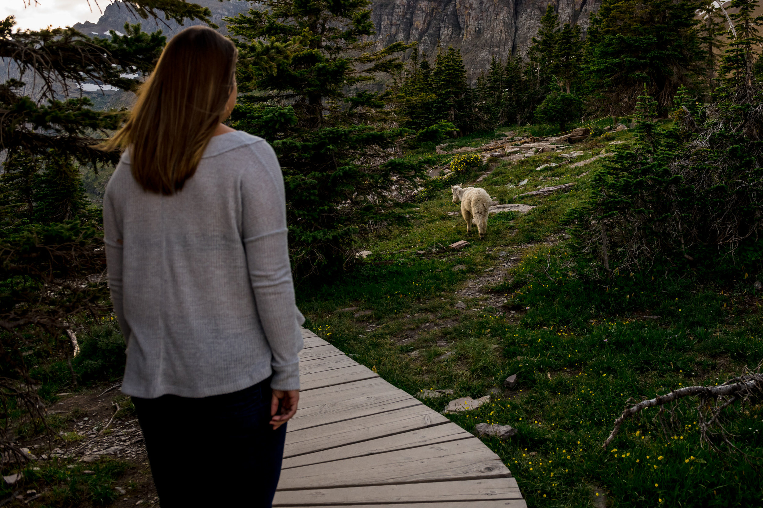 GlacierNationalPark2019-Anna&Bing-1630.jpg
