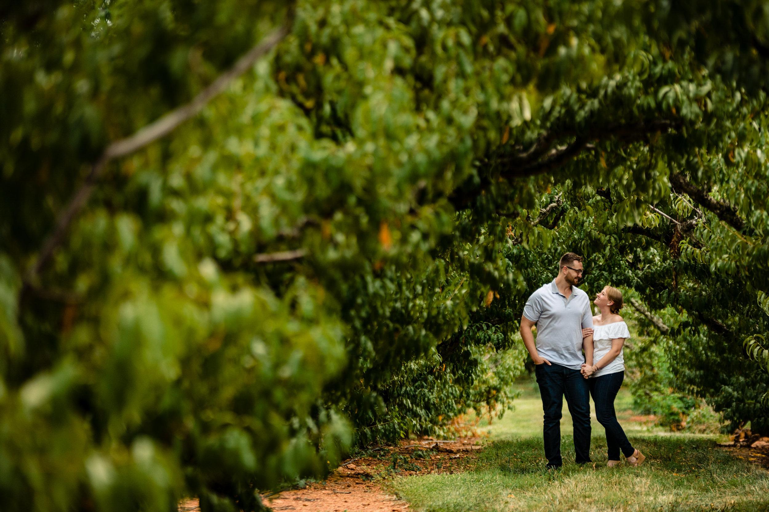 Shenadoah National Park Engagement - Melissa & Ron-1334.jpg