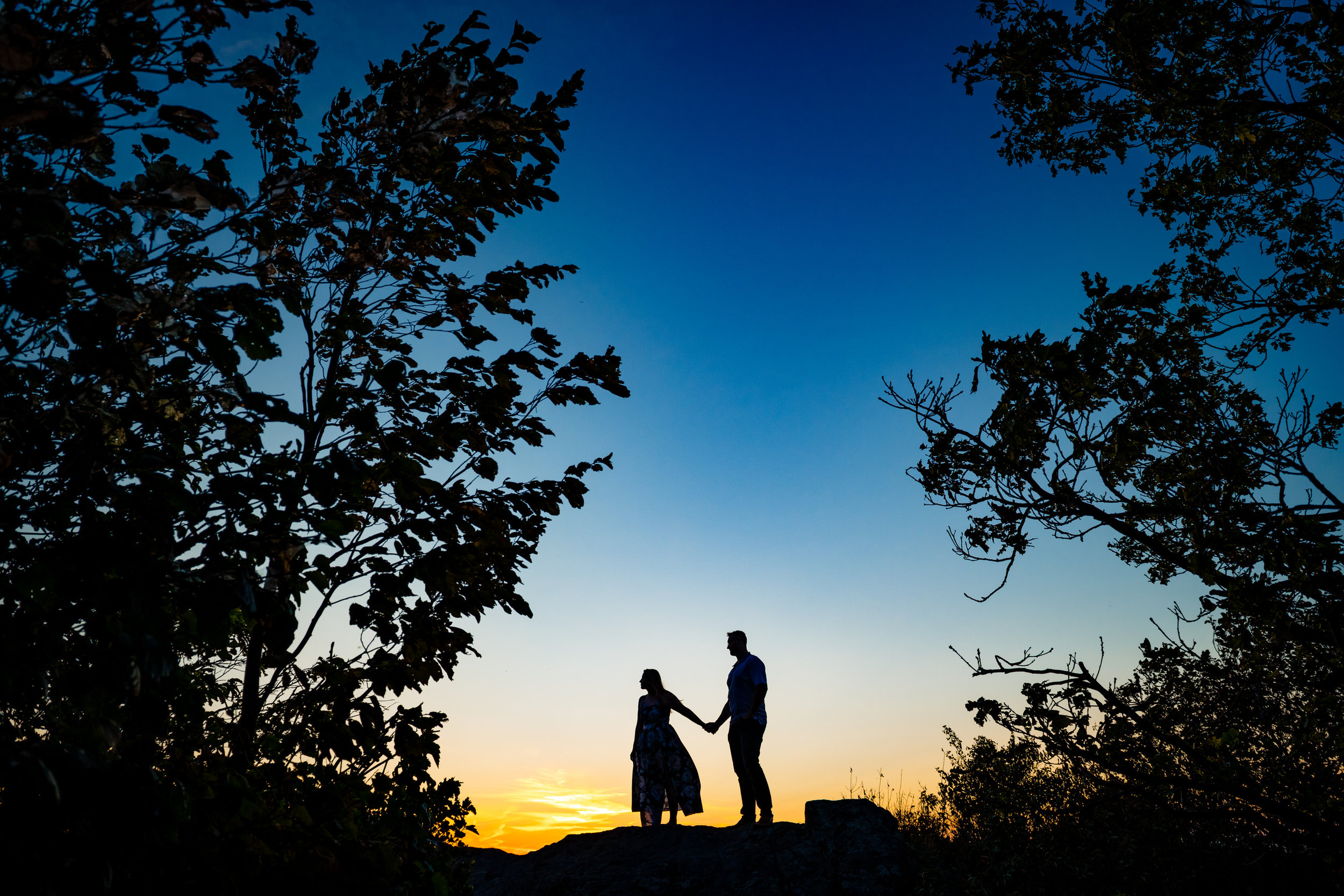 Shenadoah National Park Engagement - Melissa & Ron-3935.jpg
