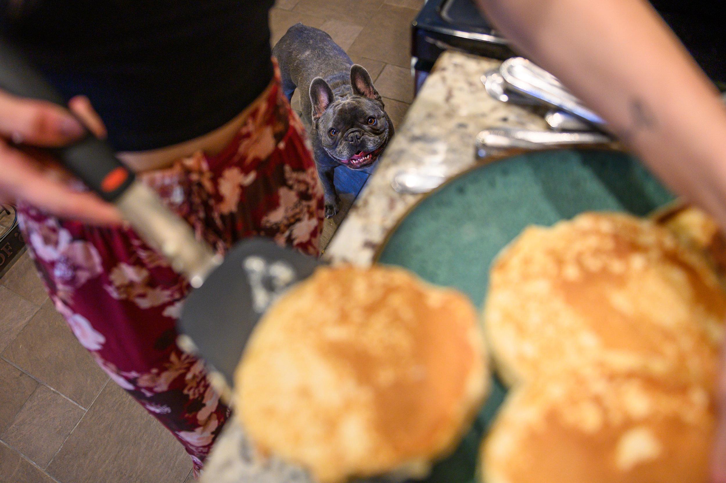Pancakes&Puppies-VAEngagement-Emily&Mitch-1831.jpg