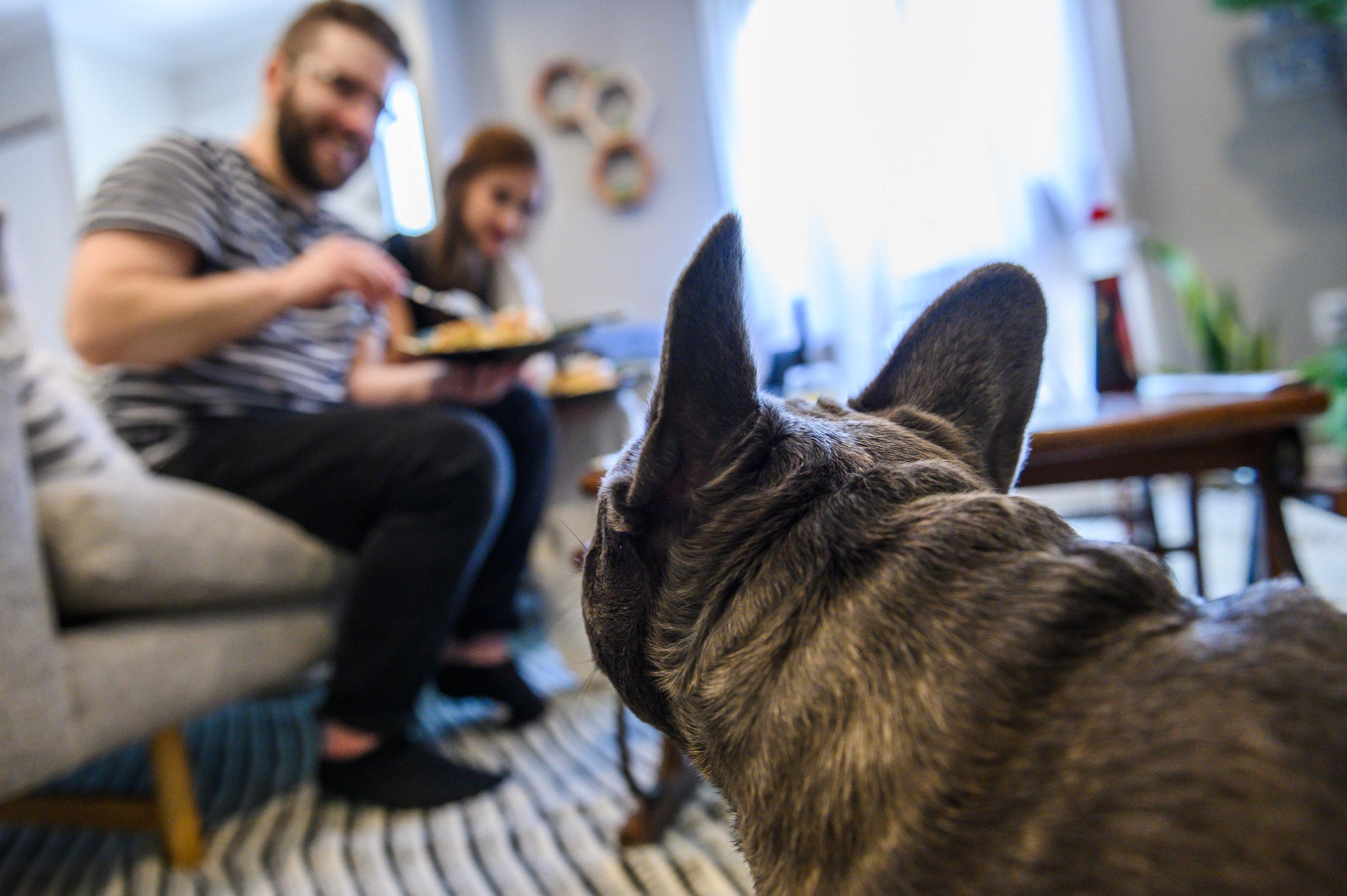 Pancakes&Puppies-VAEngagement-Emily&Mitch-2105.jpg