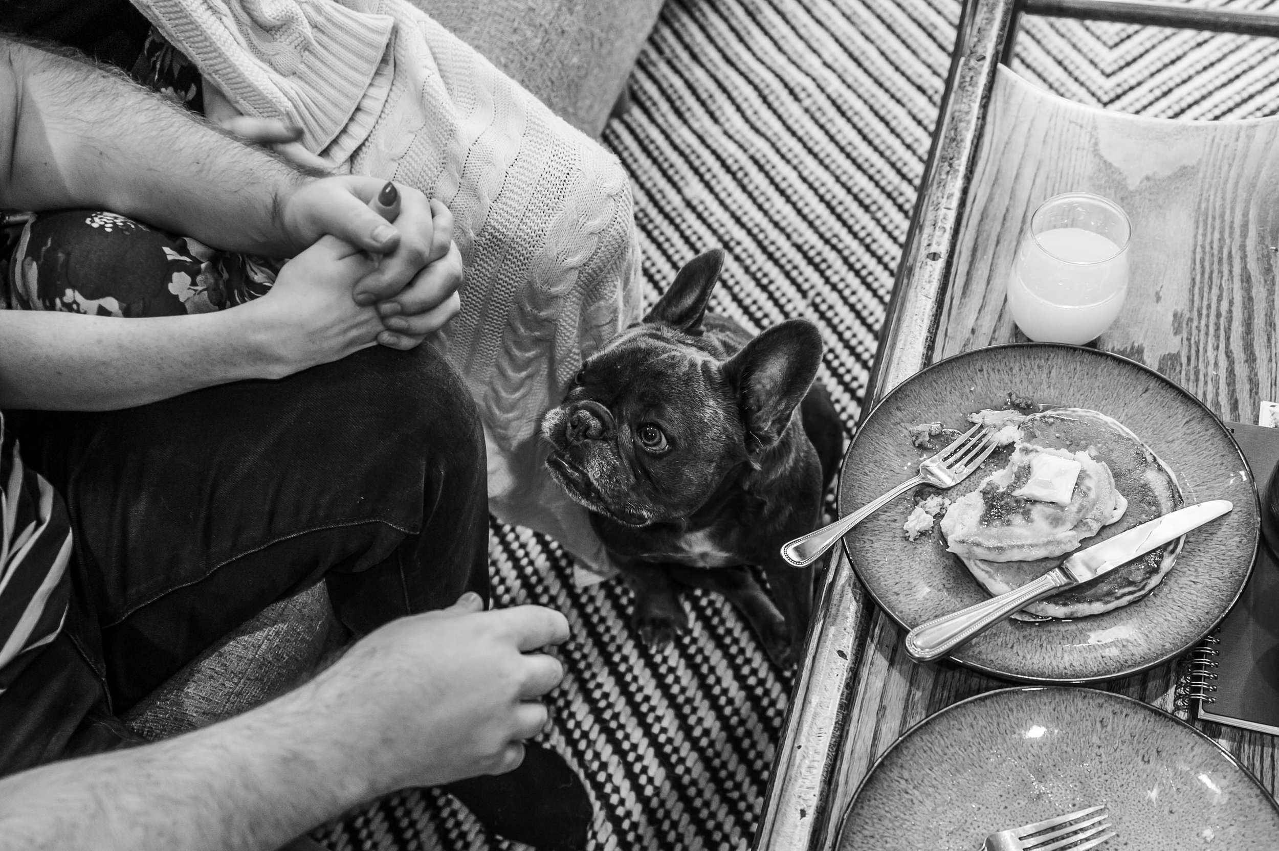 Pancakes&Puppies-VAEngagement-Emily&Mitch-2161.jpg