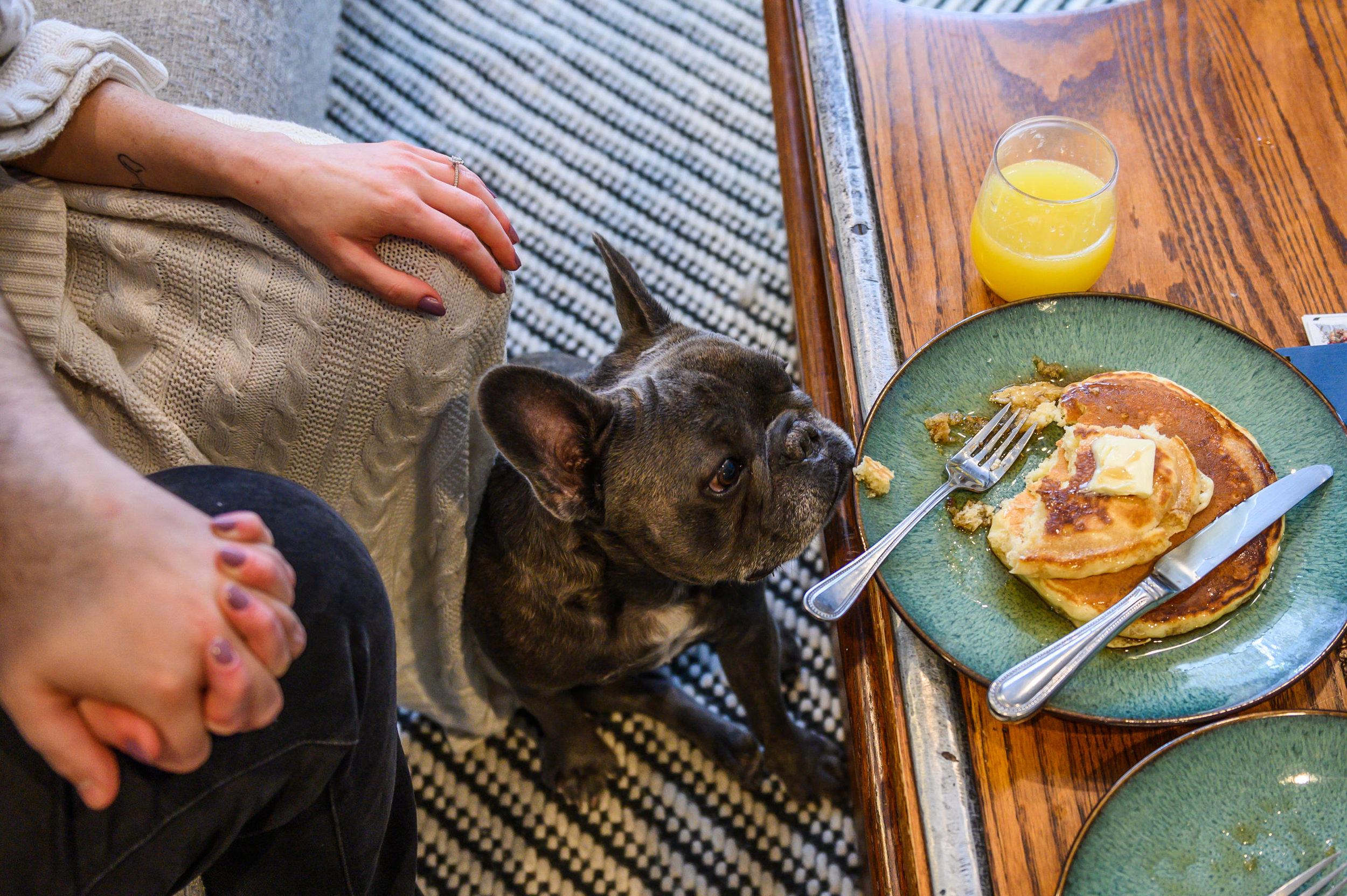 Pancakes&Puppies-VAEngagement-Emily&Mitch-2182.jpg