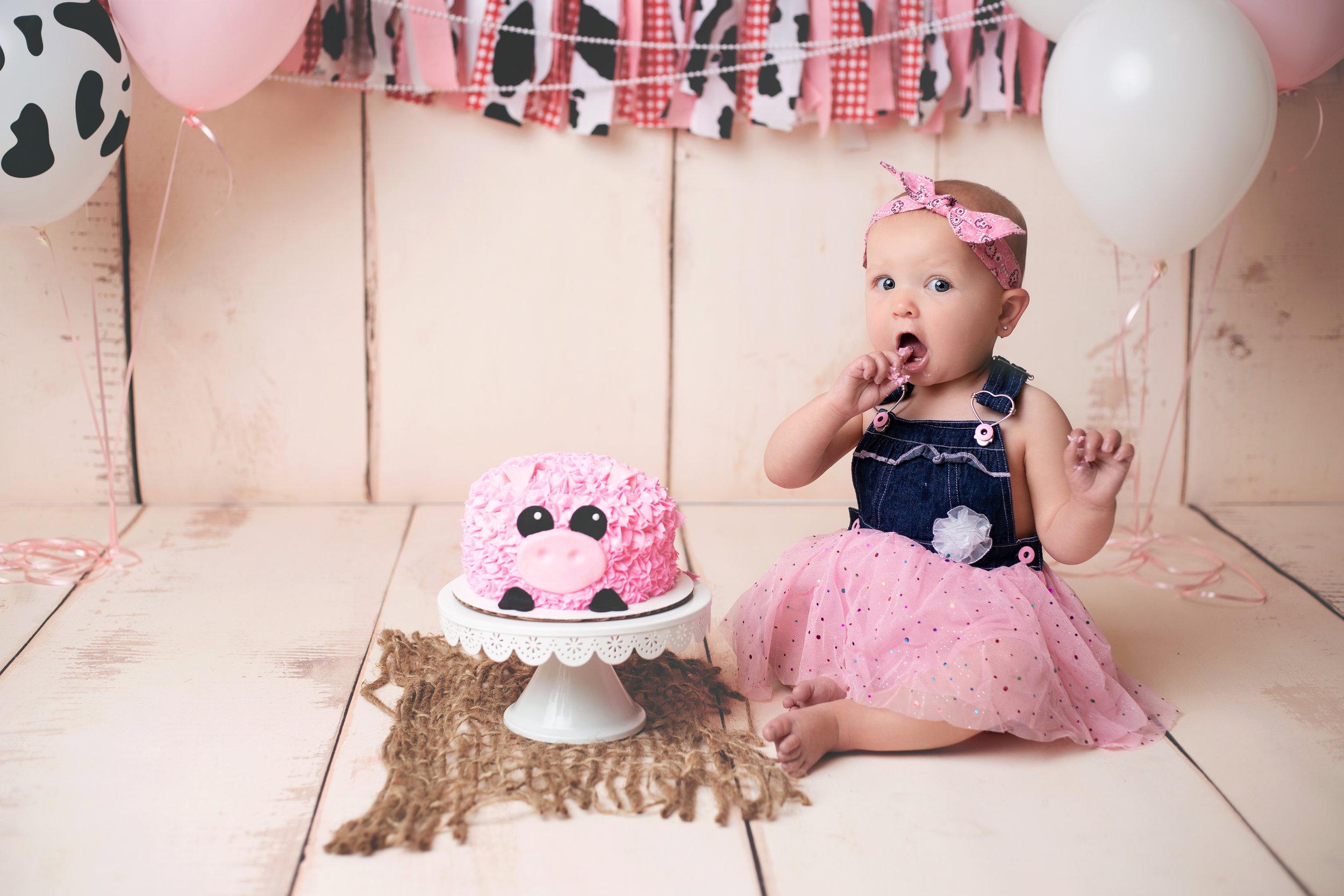 anchorage-cake-smash-photographer-1.jpg
