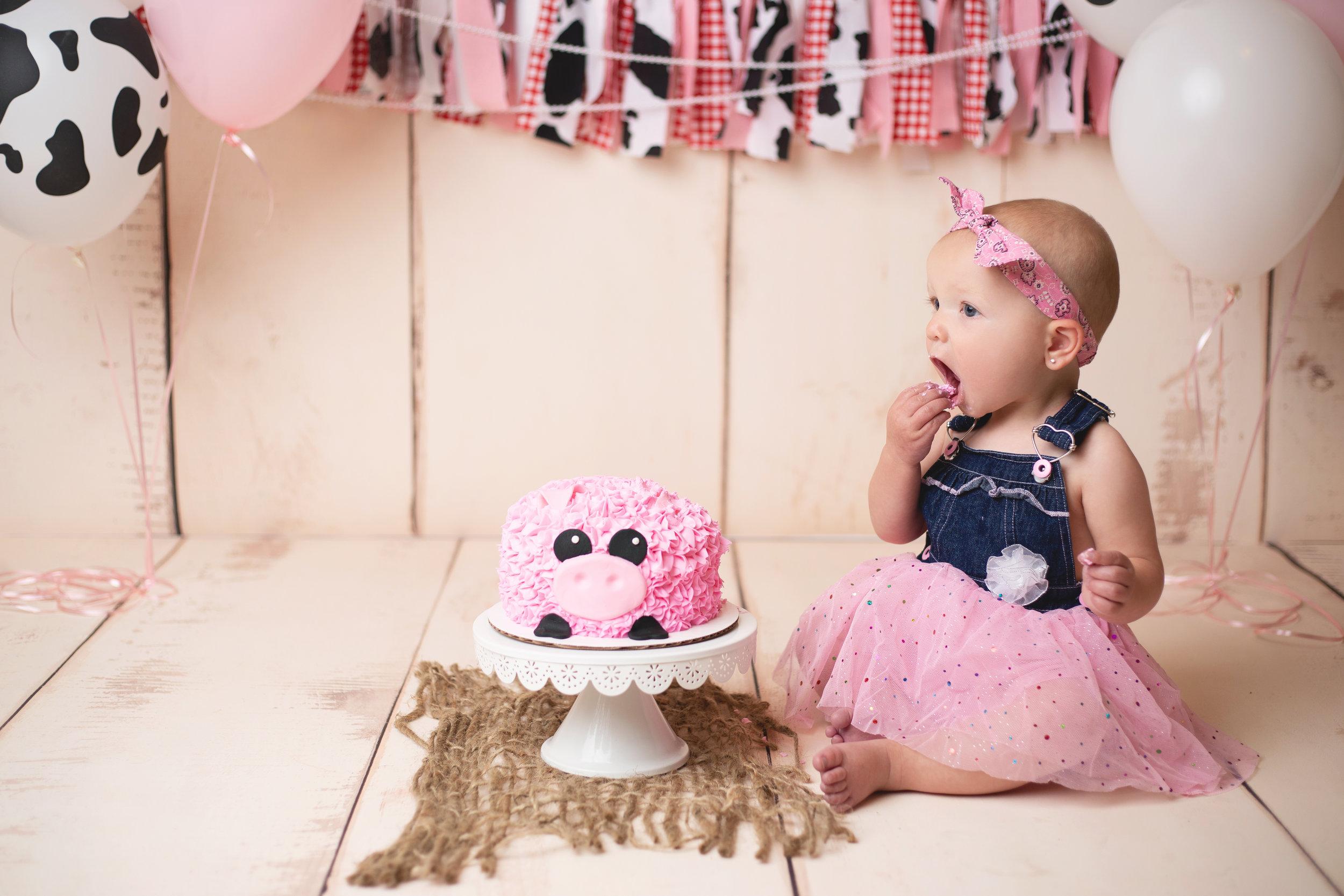 anchorage-cake-smash-photographer-2.jpg