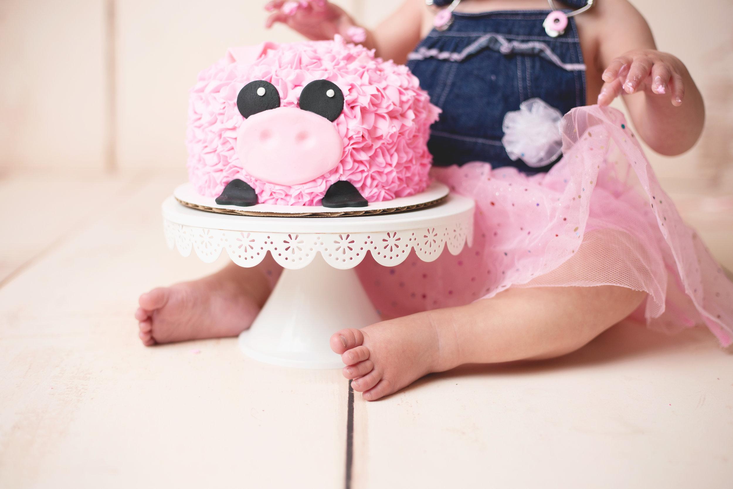 anchorage-cake-smash-photographer-3.jpg