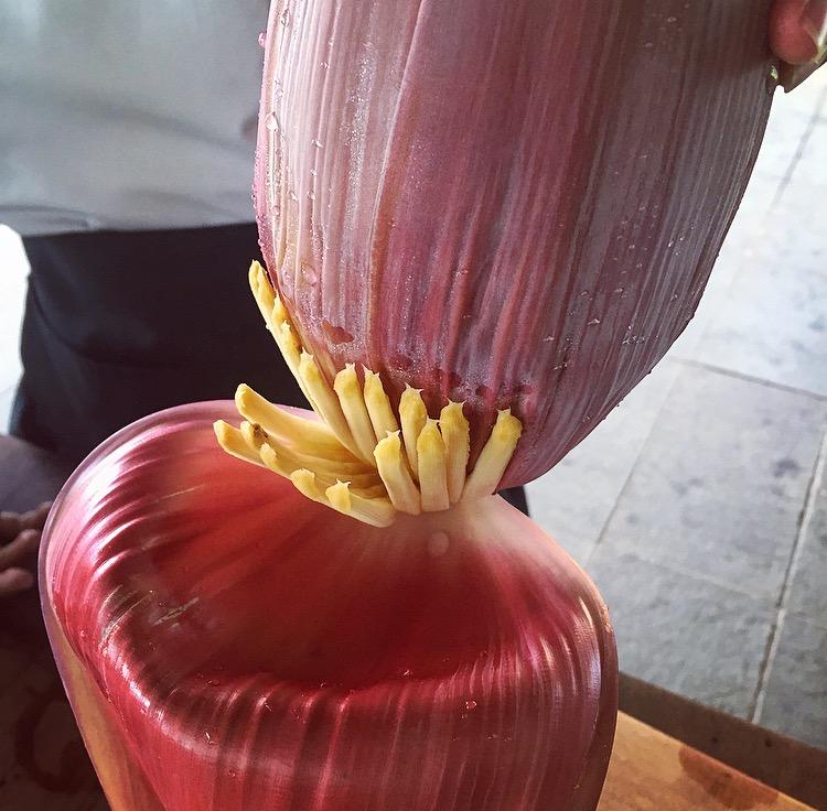 RedBridge_Banana Flower.jpg